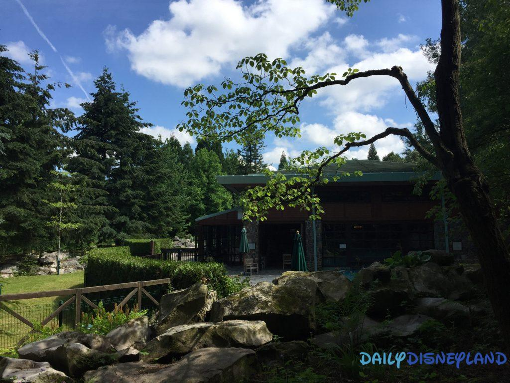 trip report golden forest club disney sequoia lodge disneyland paris daily disneyland